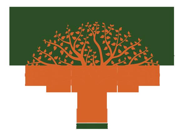 Phase 1 ESA Logo